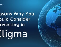 5 Reasons Why You Should Consider Investing in Eligma