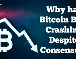 Why has Bitcoin Been Crashing Despite Consensus?